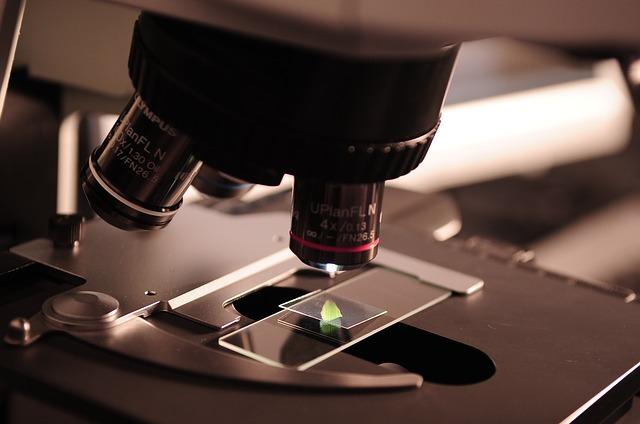 Offerta-di-Lavoro:-Tirocinio-presso-Laboratorio-Microbiologico-